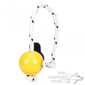 Top-Matic Fun Ball SOFT with Multi Power-Clip for Small Dogs