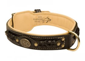Akita Dog Collar of Royal Design for Walks in Style