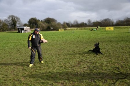 Secure Dog Training Protective Suit from Dirt and Scratches