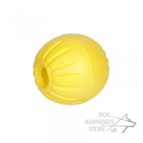 Hard Durable Dog Toy Ball Light-Weighted and Teeth Resistant