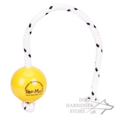 Top-Matic Fun Ball SOFT for Small Dogs and Breeds