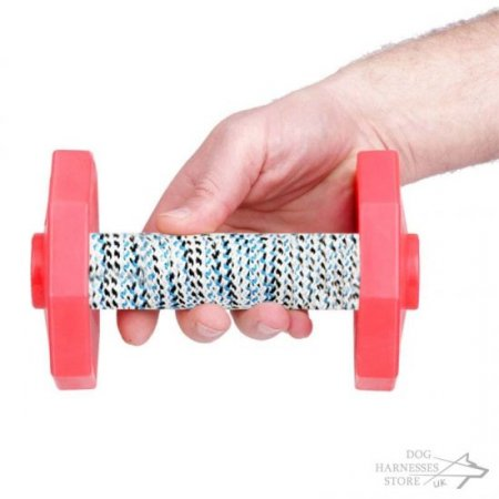 IGP Dog Dumbbell with Red Weight Plates, 650 g