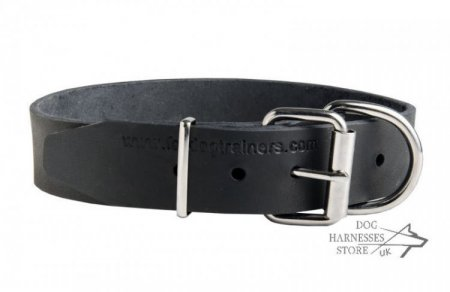 Labrador Leather Dog Collar with Name Plate for Identification
