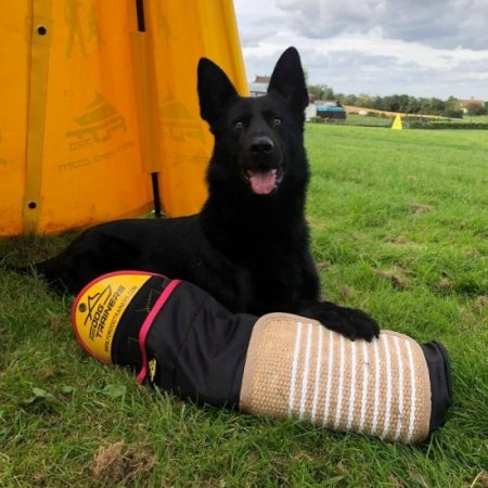 German Shepherd IGP Training Sleeve with Jute Cover