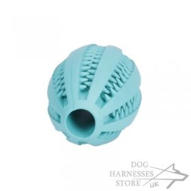 "Dog Toy Dental Health ""Denta Fun Rugby Ball"""