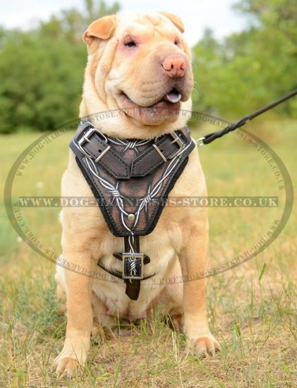 Shar-Pei Harness Leather with Barbed Wire Hand Painting