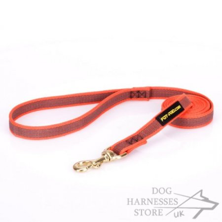 Strong Nylon Dog Lead Orange with Slip-Resistant Rubber Lines