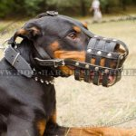 Leather Dog Muzzle UK of Riveted Straps Padded with Nappa