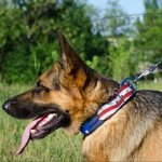 Painted Dog Collar 'American Pride' for GSD Bright Style