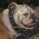 Double-Ply Leather Dog Collar Royal Design for British Bulldog