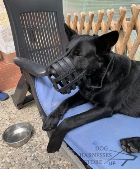 German Shepherd Muzzle Leather Super Ventilated for Daily Use