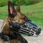 Herder Dog Muzzle Wire Basket Design, Fully Leather Padded