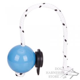 Top-Matic Magnet Trainingsball with Multi Power-Clip