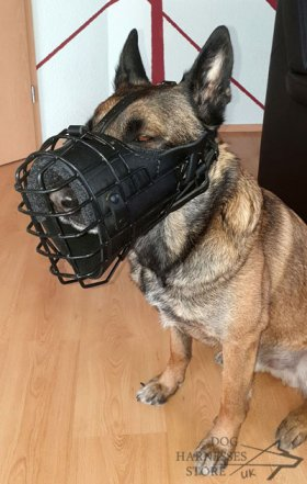 Training and Walking Dog Muzzle Covered with Black Rubber