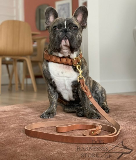 French Bulldog Leather Collar for Behavior Correction and Walks
