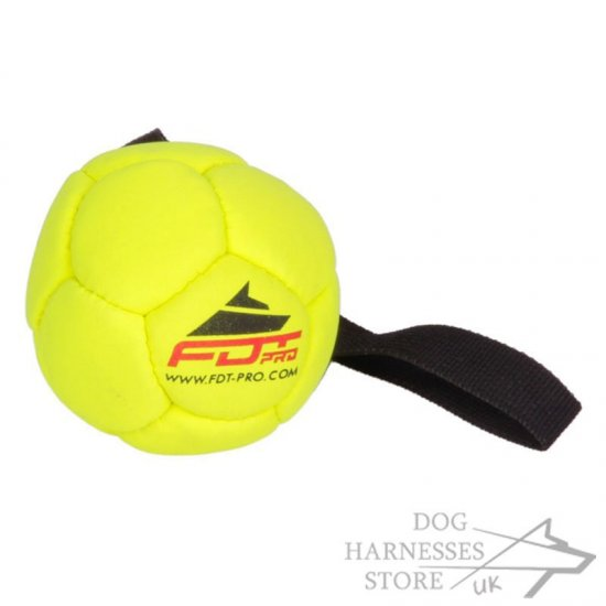 Yellow Ball Dog Toy