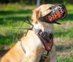 "Golden Retriever Harness UK of Natural Leather ""Flame"" Painted"