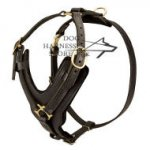 Bestseller! Padded Dog Harness UK, Exclusive Handcrafted
