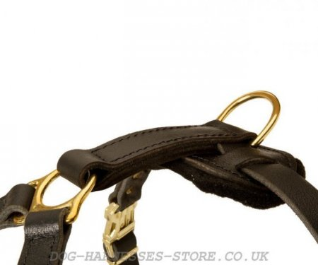 Leonberger Dog Harness of Leather for Secure Control