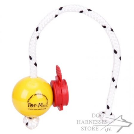 Top-Matic Fun Ball SOFT with Maxi Power-Clip for Small Dogs