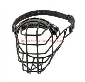 Basket Muzzle for Cane Corso with Antifreeze Rubber Covering