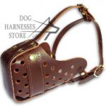 Best Leather Dog Muzzle for Large Breeds Training and Walks