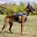 Dog Harness Vest for Belgian Shepherd, Warm Nylon Coat