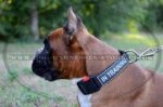 Dog Training Collar for Boxer, Nylon with Removable ID Patches