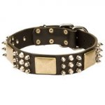 Leather Dog Collar with Spikes, Plates & Pyramids, Exclusive