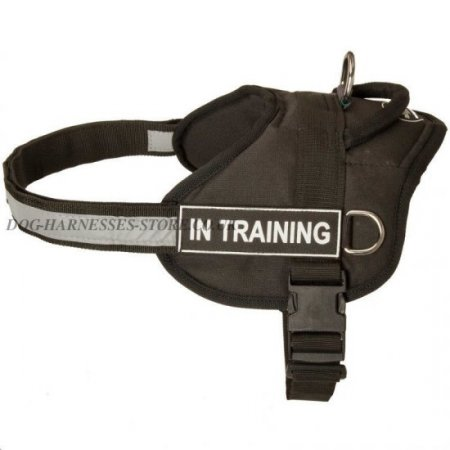 Walking Dog Harness for Large Dogs with Best Studs