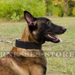Bestseller! Extra Wide Leather Dog Collar for Malinois Shepherd