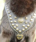 Luxury Dog Harness Studded and Padded Chest for German Shepherd