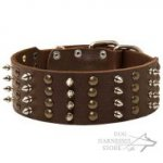 Extra Wide Leather Dog Collar with Nickel Spikes and Brass Studs