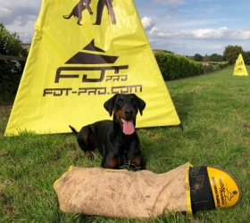 Dog Bite Sleeve with Jute Cover for Advanced IGP Training