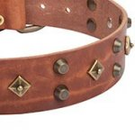 High Fashion Dog Collar with Old Bronze Stars and Brass Pyramids