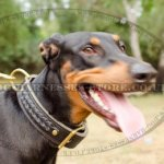 Doberman Collar of 2-ply Leather with Braids, Brass Buckle