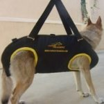 Tactical Dog Harness for Rescue Dogs