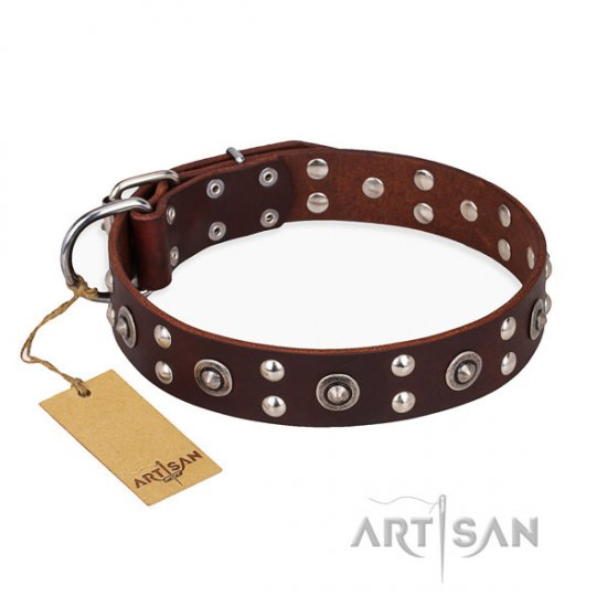 "Brown Leather Dog Collar Studded, ""Pirate Treasure"" FDT Artisan"