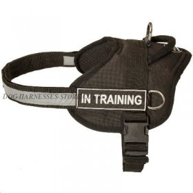 Cane Corso Harness with Handle, Patches and Reflective Strap