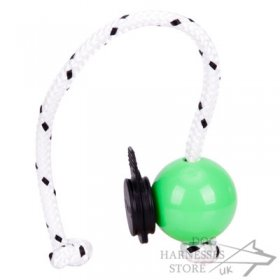 Top-Matic Fun Ball Mini with Multi Power-Clip for Young Dogs