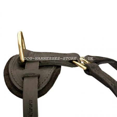 Leather Dog Harness for American Bulldog Walking and Tracking