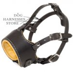 Leather Muzzle for Dogs, Nappa Padded