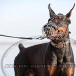 Dog Leash UK with Scissor-type Snap Hook & Braids for Doberman