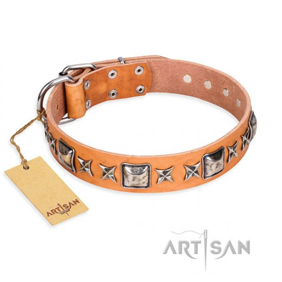 "Tan Leather Dog Collar ""Silver Chic"" Decorations by FDT Artisan"