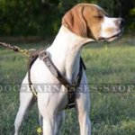 Bestseller! Pointer Harness of Double-Ply Leather for Tracking
