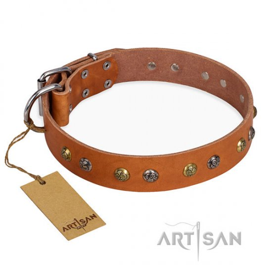 "Artisan Leather Dog Collar with Studs ""Golden'n'Silver Luxury"""