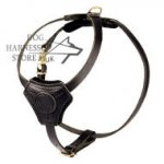 Padded Dog Harness for Puppies & Small Breeds