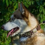 Leather Dog Collar for Husky with Vintage Plates and Pyramids