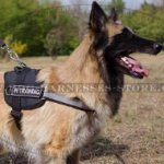 Tervuren Harness with ID Patches and Reflective Strap, Nylon