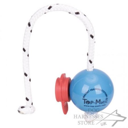 Top-Matic Magnetic Ball with Maxi Power-Clip